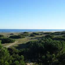 Variety of plots for sale in the Seaside Resort of San Antonio.