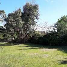 Parque jardín