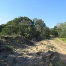 Nice lot for sale situated in San Antonio beach resort, Rocha, Uruguay