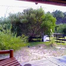 Deck Galería de entrada