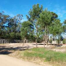 Two land lots for sale together or individually in Rincon del Rosario area, La Paloma resort