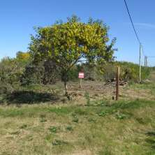 Two plots for sale in Punta Rubia resort, just a few meters away from the beach