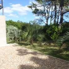 Jardín nativo