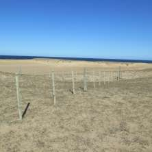 Exclusive land plot with ocean view in First Line from the coast in San Antonio, Uruguay