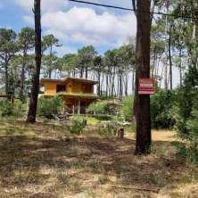 Muy buen solar arbolado ubicado en la tranquila zona de Anaconda, balneario La Paloma