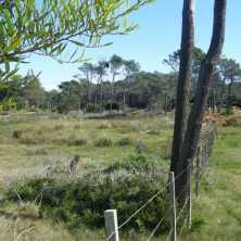 Terreno de gran superficie en venta en el Balneario La Paloma