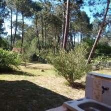 Fondo jardín