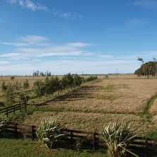 Campo turístico ganadero ubicado sobre Ruta 15, a 10 kilómetros del Balneario La Paloma