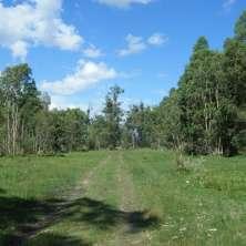 Entrada principal desde ruta