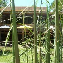 Exclusive Eco Lodge for sale in the Seaside Resort Punta Rubia